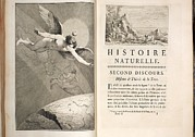 Naturelle Prints - 1749 Buffon Angel Creation Of The Earth Print by Paul D Stewart