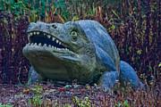 Dinosaur Print by Dawn OConnor