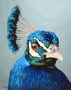 Bird Paintings - Untitled  by Lesley Alexander
