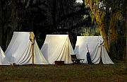 Historic Battle Site Prints - 1800s Army Tents Print by David Lee Thompson
