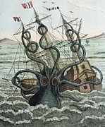 Giant Squid Framed Prints - 1815 Collosal Polypus Octopus And Ship Framed Print by Paul D Stewart