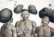Jewellery Posters - 1827 New Guinea Tribal Warriors Poster by Paul D Stewart