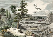 1833 Penny Magazine Extinct Animals Crop Print by Paul D Stewart