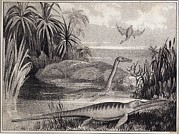 Sea And Sky Posters - 1837 Extinct Prehistoric Animals Dorset Poster by Paul D Stewart