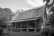 Newberry Prints - 1850s Florida Cracker Farmhouse Print by Lynn Palmer