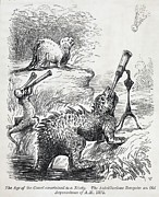 Mass Extinction Posters - 1861 Punch Dinosaurs & Comet Cartoon Poster by Paul D Stewart