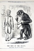 Cartoon  Lion Posters - 1861 Punch Gorilla Cartoon Poster by Paul D Stewart