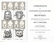 Haeckel Prints - 1874 Frontis Haeckel Anthropogenie Print by Paul D Stewart