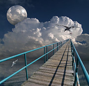 Sea Gull Photos - 1875 by Peter Holme III