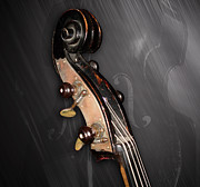 Violin Digital Art - 1880 Bass - Scroll by Lisa A Bello