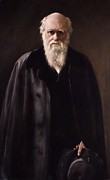 Origins Of Life Posters - 1881 Charles Darwin Portrait Aftr Collier Poster by Paul D Stewart
