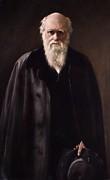 1881 Charles Darwin Portrait Aftr Collier Print by Paul D Stewart
