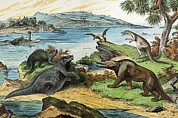 Schubert Framed Prints - 1888 Colour Litho Of Jurassic Dinosaurs Framed Print by Paul D Stewart