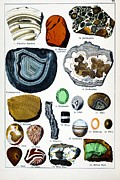 Schubert Framed Prints - 1888 Colour Lithograph Of Minerals Framed Print by Paul D Stewart