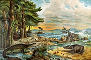 Schubert Framed Prints - 1888 Colour Lithograph Of Triassic Coast Framed Print by Paul D Stewart