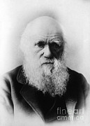 Origin Posters - Charles Robert Darwin, English Poster by Science Source
