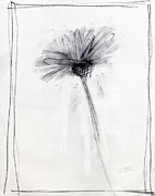 Flower Drawings Originals - RCNpaintings.com by Chris N Rohrbach