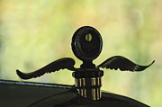 1916 Framed Prints - 1916 Crane-Simplex Model 5 Hood Ornament Framed Print by Jill Reger