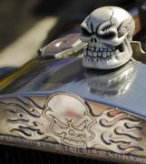 Chrome Skull Prints - 1923 T-Bucket Skull Hood Ornament Print by Jill Reger