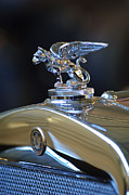 1929 Roadster Prints - 1929 Gardner Series 120 Eight-in-Line Roadster Hood Ornament 2 Print by Jill Reger