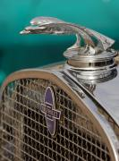 Car Detail Prints - 1931 Chevrolet Hood Ornament Print by Jill Reger