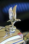 Jill Reger Prints - 1932 Alvis 6 Speed 20 SA 4-Door Tourer Hood Ornament Print by Jill Reger
