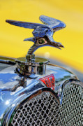 Historic Vehicle Prints - 1932 Alvis Hood Ornament Print by Jill Reger