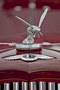 5 Litre Posters - 1934 Bentley 3.5-Litre Drophead Coupe Hood Ornament Poster by Jill Reger