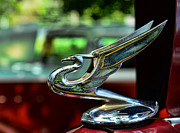 Flying Eagle Prints - 1934 Chevrolet Flying Eagle Hood Ornament - 1 Print by Paul Ward
