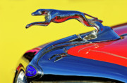 Car Mascots Prints - 1934 Ford Hood Ornament Print by Jill Reger