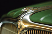 Collector Hood Ornaments Posters - 1934 Nash Ambassador 8 Hood Ornament Poster by Jill Reger