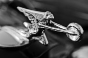 Vintage Hood Ornament Photo Framed Prints - 1934 Packard Hood Ornament 2 Framed Print by Jill Reger