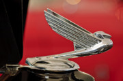 Car Mascot Metal Prints - 1935  Chevrolet Eagle Hood Ornament Metal Print by Jill Reger