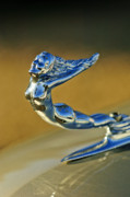 Collector Hood Ornament Posters - 1936 Cadillac Fleetwood Hood Ornament Poster by Jill Reger