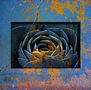 Texture Flower Prints - 1936 Print by Peter Holme III