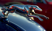 Greyhound Photo Posters - 1937 Chevrolet Greyhound Ornament Poster by Tim McCullough