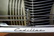 Car Detail Prints - 1940 Cadillac 60 Special Sedan Grille Print by Jill Reger