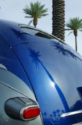 Abstract Palm Trees Photos - 1946 Steel Body GM by Jill Reger