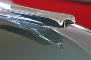 Car Mascot Prints - 1948 Cadillac Series 62 Hood Ornament Print by Jill Reger