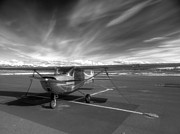 Glenn Barclay Framed Prints - 1949 Cessna C-150  Framed Print by Glenn Barclay
