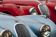Car Show Photography Posters - 1950 Jaguar XK120 Roadster Poster by Jill Reger