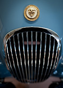 Old Car Art - 1952 Jaguar Hood Ornament and Grille by Sebastian Musial