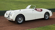 Autos Posters - 1954 Jaguar XK120 Roadster  Poster by Jill Reger