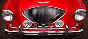 Automotive Art - 1955 Austin Healey 100-4 by David Patterson