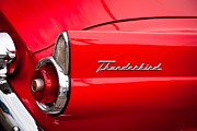 T-bird Posters - 1955 Ford Thunderbird Poster by David Patterson