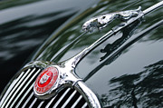 Beach Photograph Posters - 1955 Jaguar XK 150 Hood Ornament  Poster by Jill Reger