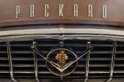 Historic Vehicle Photo Prints - 1955 Packard 400 Hood Ornament 2 Print by Jill Reger