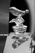 Car Mascots Framed Prints - 1955 Rolls-Royce Hood Ornament 5 Framed Print by Jill Reger