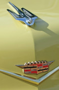 Car Mascots Prints - 1956 Cadillac Sedan Deville Hood Ornament Print by Jill Reger