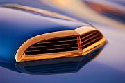 Gold Ford Photos - 1957 Ford Thunderbird Scoop by Jill Reger